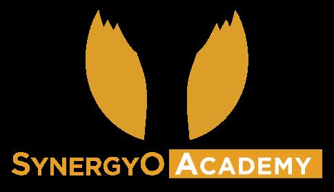 Synergyo Academy